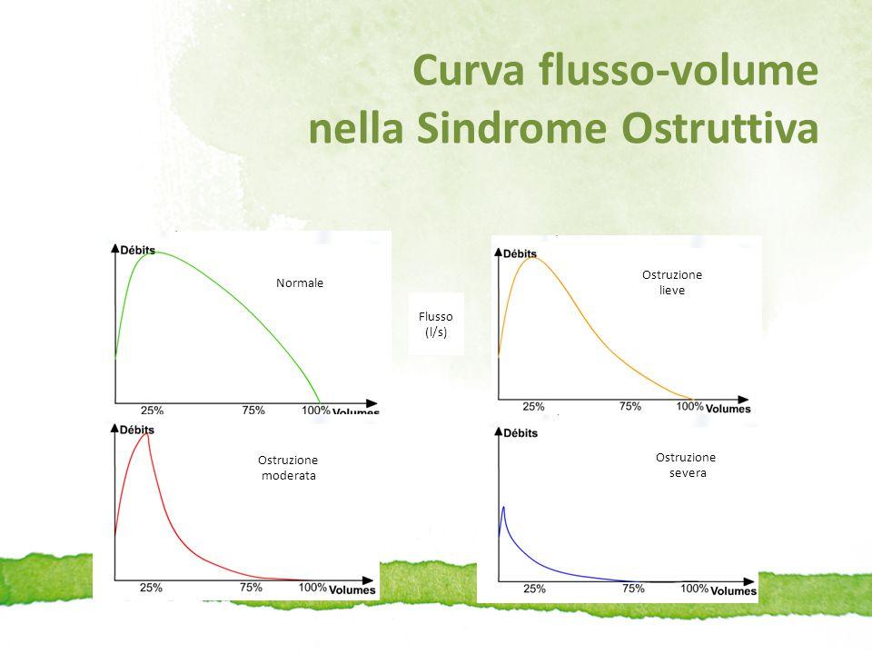 Curva flusso-volume nella Sindrome Ostruttiva Normale Ostruzione moderata Ostruzione severa Ostruzione lieve Flusso (l/s)