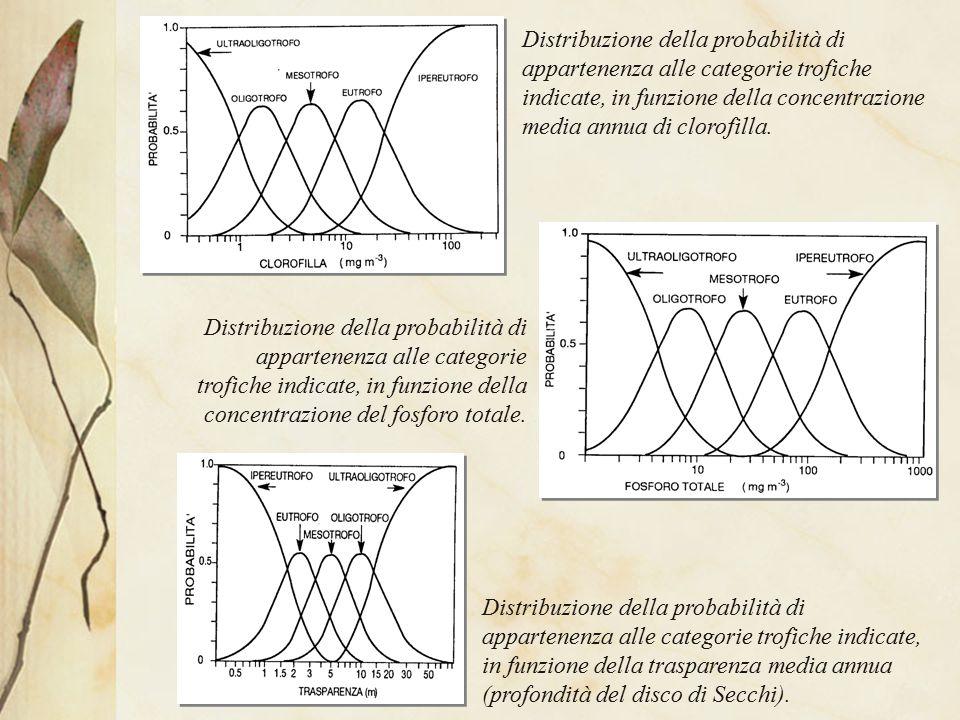 C) QUANTIFICAZIONE DEI CARICHI TROFICI Due tipi di carichi: 1) carichi esterni (dal bacino imbrifero) 2) carichi interni (dai sedimenti dei laghi stessi) CARICHI ESTERNI Fonti localizzate: scarichi civili scarichi zootecnici scarichi industriali Fonti diffuse:suolo coltivato suolo non coltivato precipitazioni I carichi esterni possono essere valutati in maniera TEORICA sulla base di coefficienti generalmente adottati.