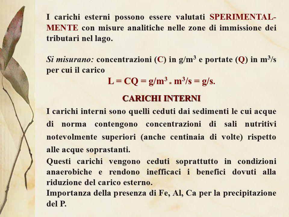 D) CARICHI ACCETTABILI In genere si ricorre a modelli, disponendo unicamente di elementi relativi alla profondità media del lago e al tempo di ricambio delle acque.