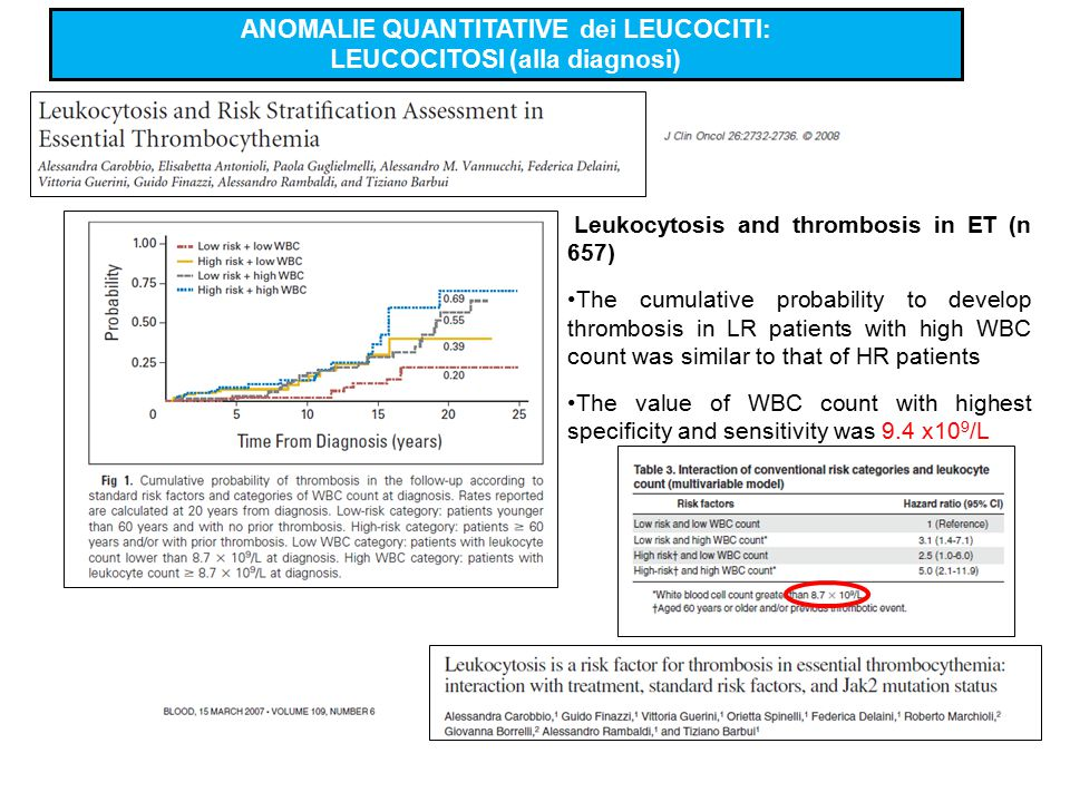 Leukocytosis and thrombosis in ET (n 657) The cumulative probability to develop thrombosis in LR patients with high WBC count was similar to that of H