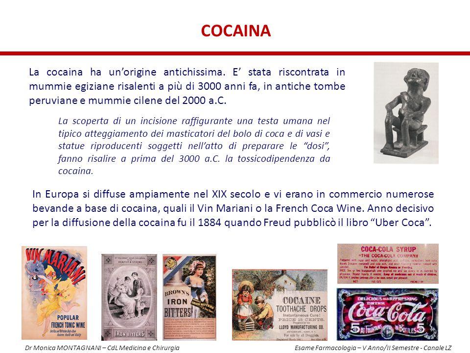 COCAINA La cocaina ha un'origine antichissima. E' stata riscontrata in mummie egiziane risalenti a più di 3000 anni fa, in antiche tombe peruviane e m