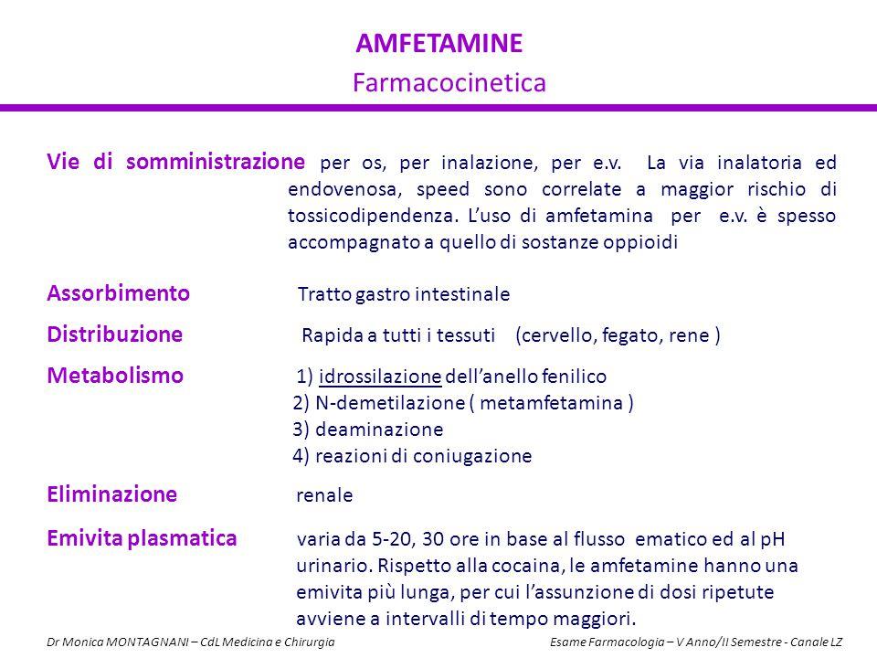 AMFETAMINE Farmacocinetica Assorbimento Tratto gastro intestinale Distribuzione Rapida a tutti i tessuti (cervello, fegato, rene ) Metabolismo 1) idro