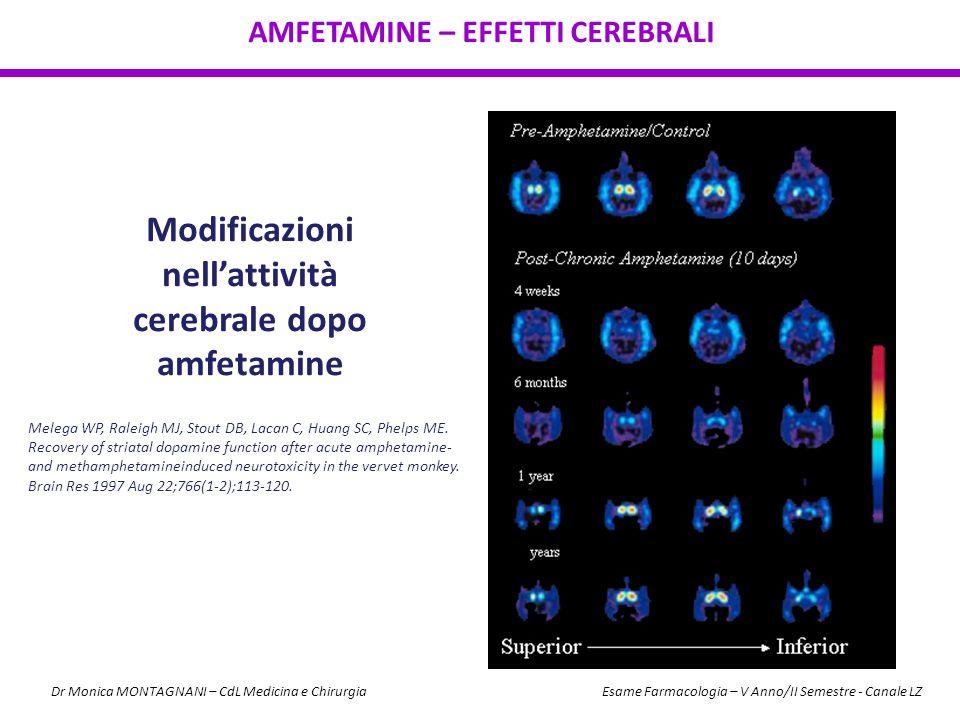 Modificazioni nell'attività cerebrale dopo amfetamine AMFETAMINE – EFFETTI CEREBRALI Melega WP, Raleigh MJ, Stout DB, Lacan C, Huang SC, Phelps ME. Re