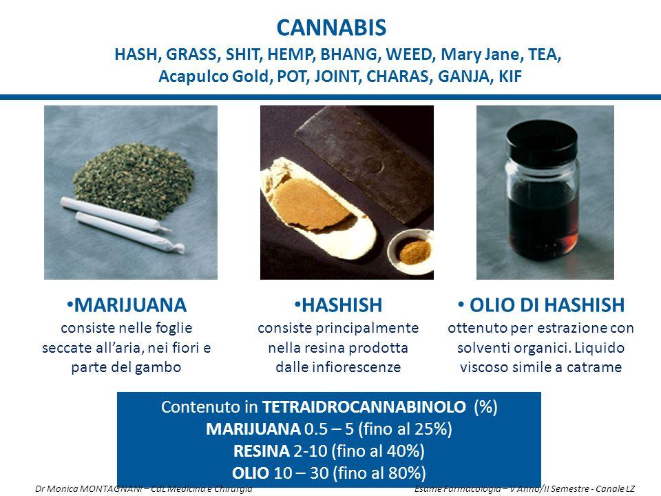 CANNABIS MARIJUANA consiste nelle foglie seccate all'aria, nei fiori e parte del gambo HASHISH consiste principalmente nella resina prodotta dalle inf