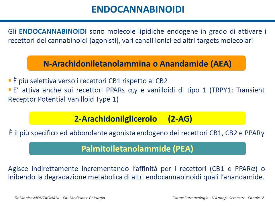 Gli ENDOCANNABINOIDI sono molecole lipidiche endogene in grado di attivare i recettori dei cannabinoidi (agonisti), vari canali ionici ed altri target