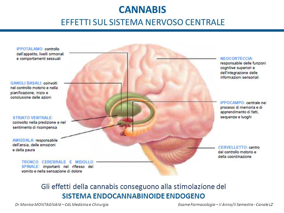 CANNABIS EFFETTI SUL SISTEMA NERVOSO CENTRALE Gli effetti della cannabis conseguono alla stimolazione del SISTEMA ENDOCANNABINOIDE ENDOGENO Dr Monica