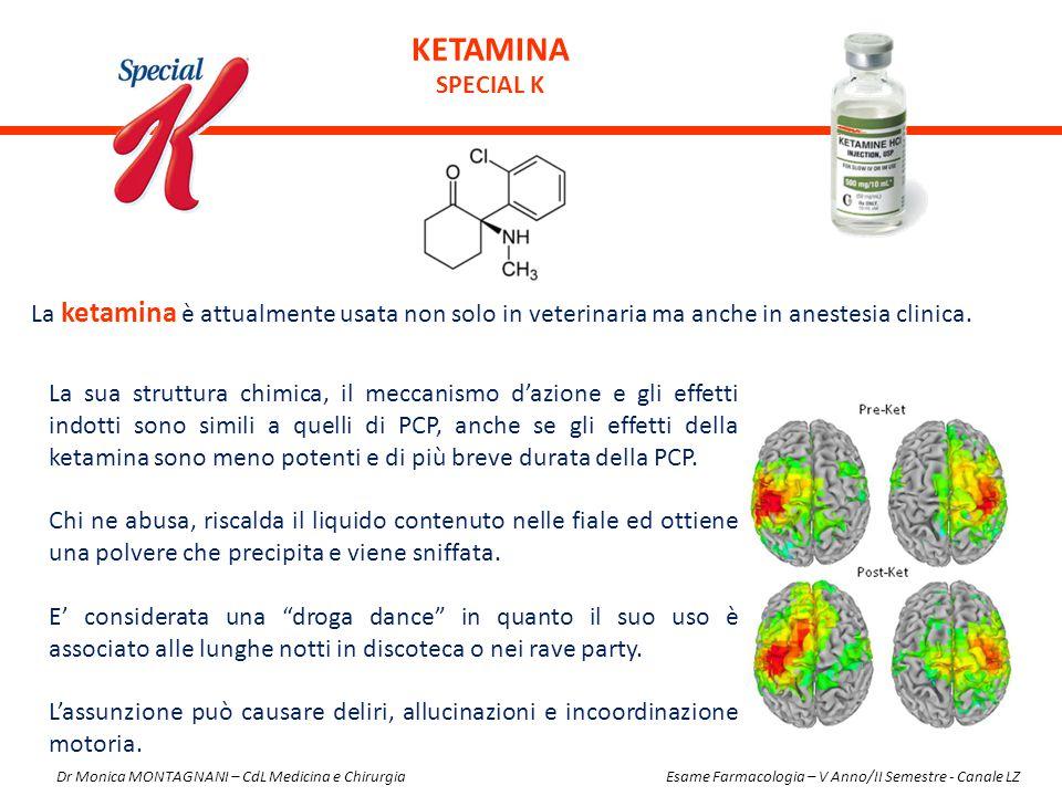 La ketamina è attualmente usata non solo in veterinaria ma anche in anestesia clinica. KETAMINA SPECIAL K La sua struttura chimica, il meccanismo d'az
