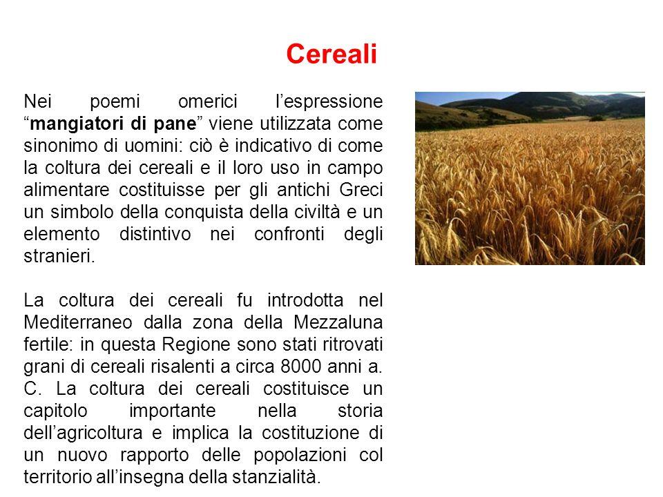 Dieta Il concetto di dieta (dìaita) venne formulato per la prima volta nella Grecia del V sec.