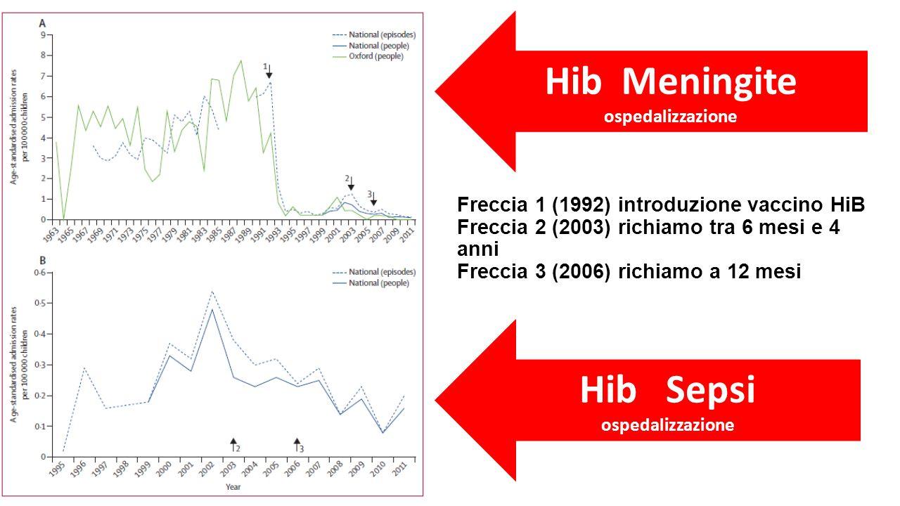 Freccia 1 (1992) introduzione vaccino HiB Freccia 2 (2003) richiamo tra 6 mesi e 4 anni Freccia 3 (2006) richiamo a 12 mesi Hib Meningite ospedalizzazione Hib Sepsi ospedalizzazione