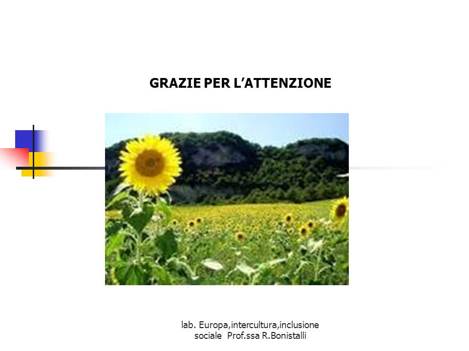 lab. Europa,intercultura,inclusione sociale Prof.ssa R.Bonistalli GRAZIE PER L'ATTENZIONE