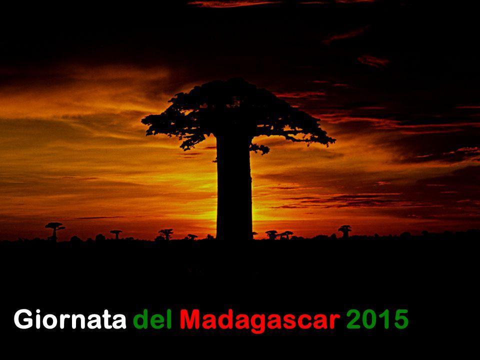 Giornata del Madagascar 2015
