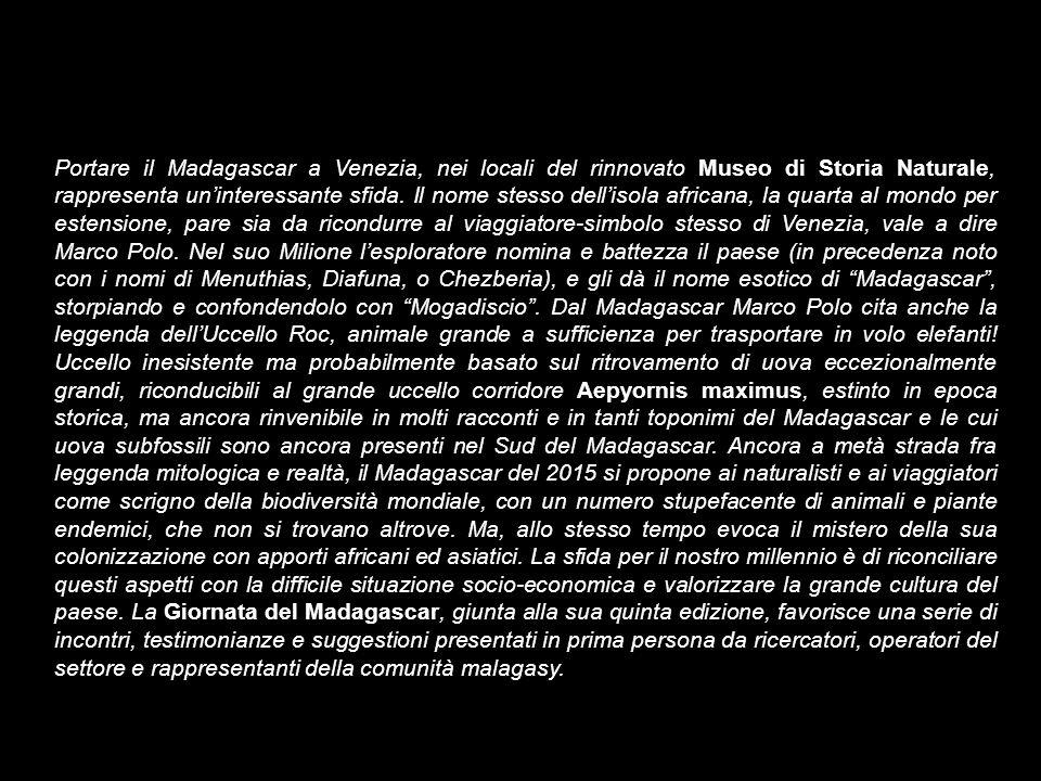 Portare il Madagascar a Venezia, nei locali del rinnovato Museo di Storia Naturale, rappresenta un'interessante sfida.
