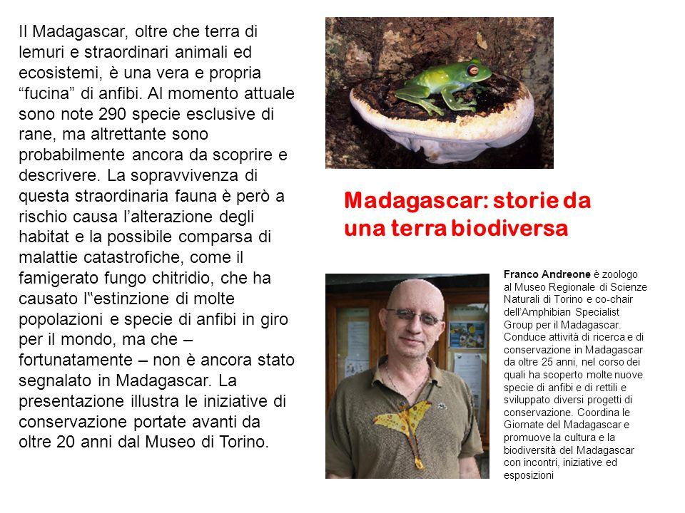 Il Madagascar, oltre che terra di lemuri e straordinari animali ed ecosistemi, è una vera e propria fucina di anfibi.