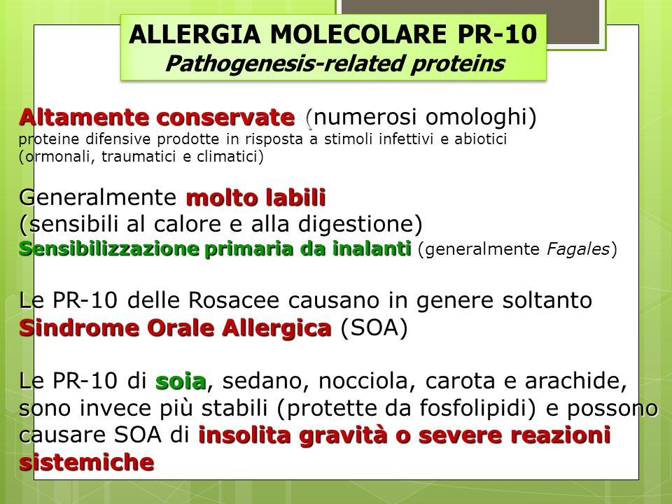 ALLERGIA MOLECOLARE PR-10 Pathogenesis-related proteins ALLERGIA MOLECOLARE PR-10 Pathogenesis-related proteins Altamente conservate (numerosi omologh