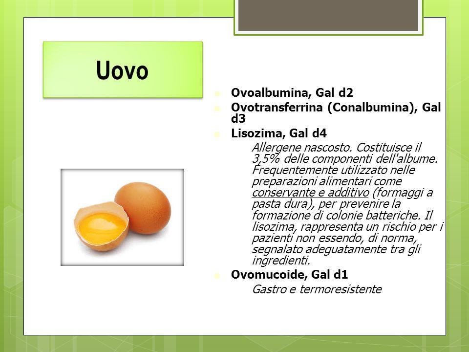 Uovo Ovoalbumina, Gal d2 Ovotransferrina (Conalbumina), Gal d3 Lisozima, Gal d4 –Allergene nascosto. Costituisce il 3,5% delle componenti dell'albume.