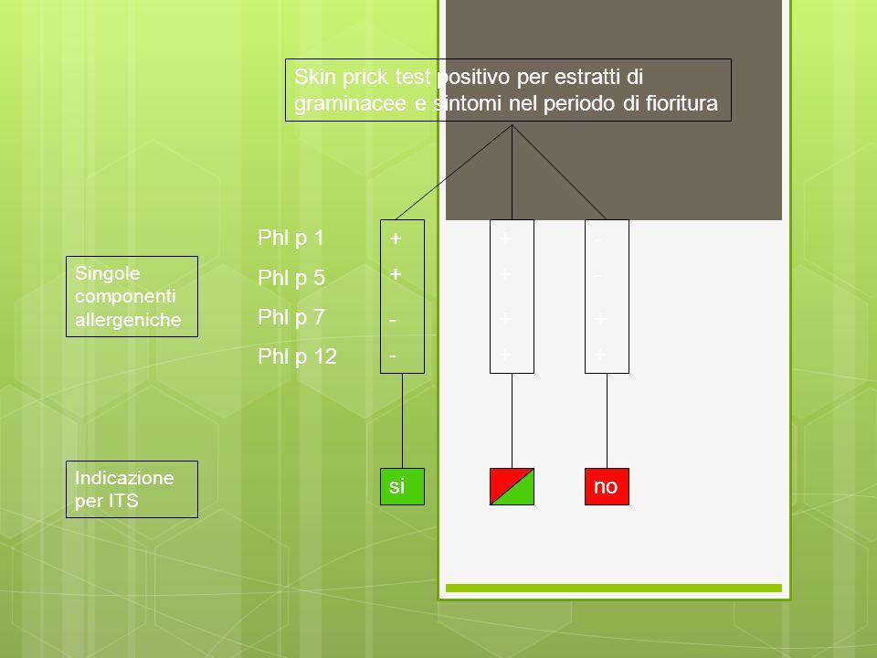 Phl p 1 Phl p 5 Phl p 7 Phl p 12 + - - si Skin prick test positivo per estratti di graminacee e sintomi nel periodo di fioritura Singole componenti al