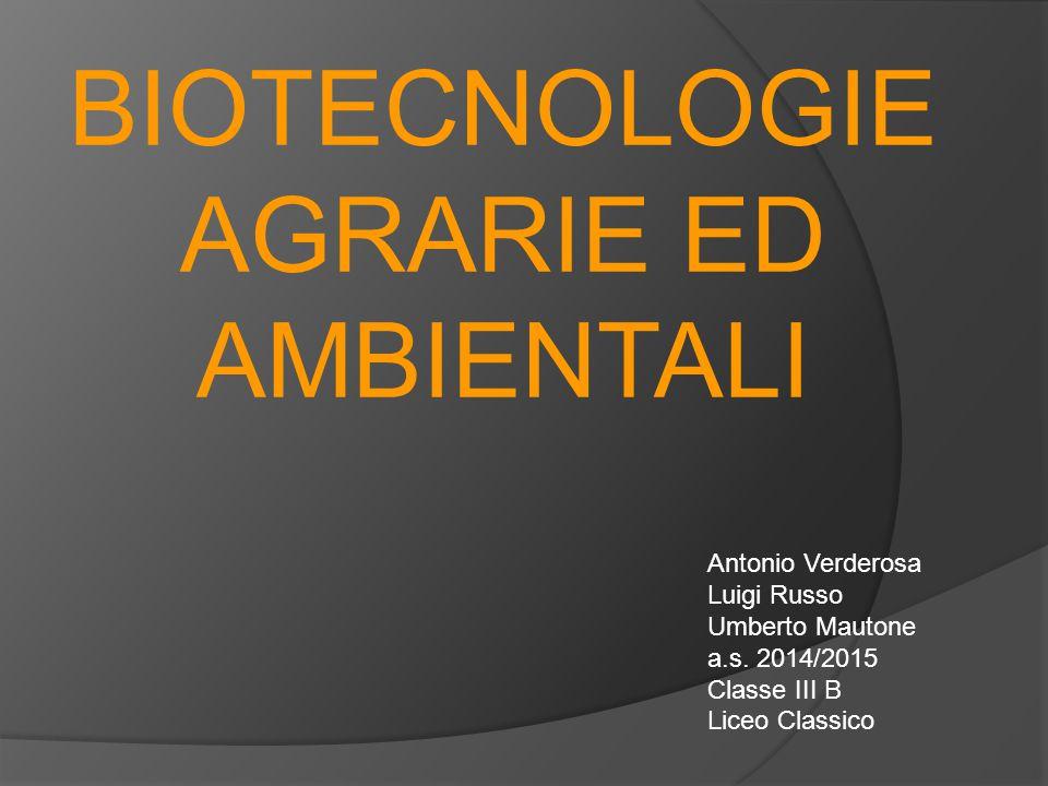 BIOTECNOLOGIE AGRARIE ED AMBIENTALI Antonio Verderosa Luigi Russo Umberto Mautone a.s. 2014/2015 Classe III B Liceo Classico