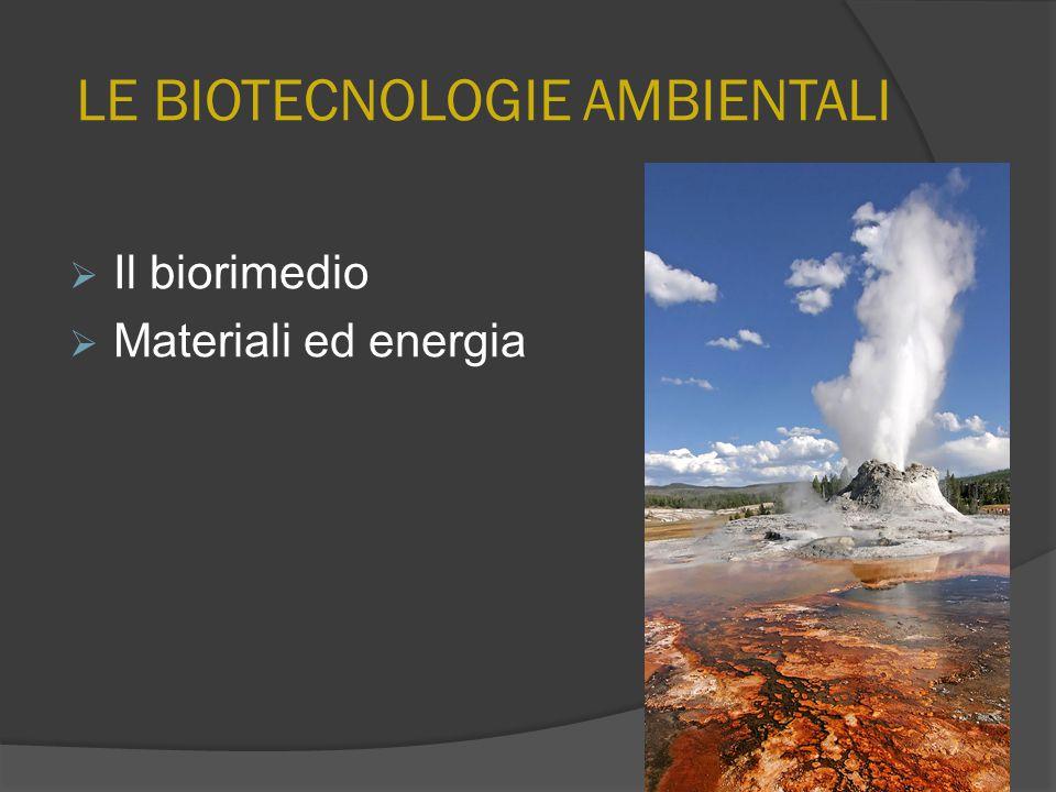 LE BIOTECNOLOGIE AMBIENTALI  Il biorimedio  Materiali ed energia