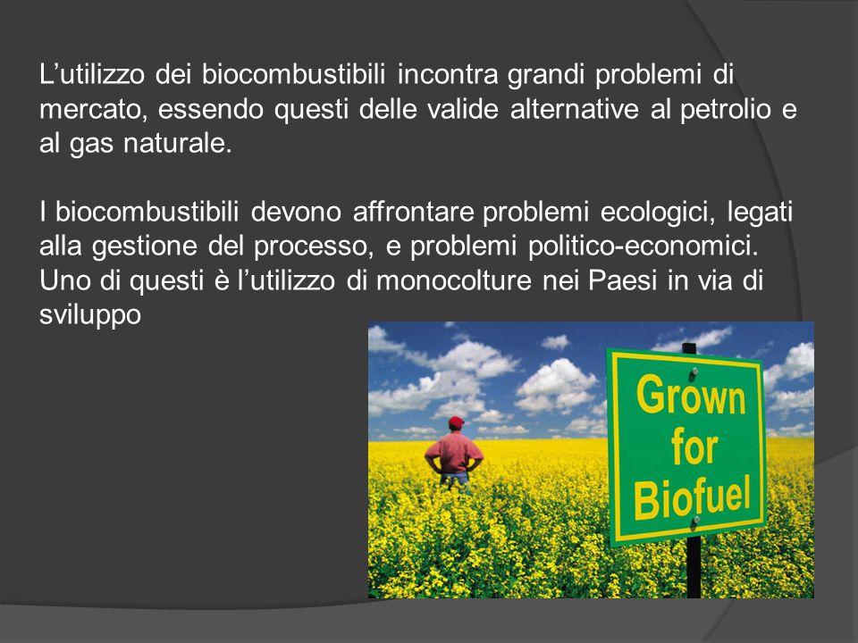 L'utilizzo dei biocombustibili incontra grandi problemi di mercato, essendo questi delle valide alternative al petrolio e al gas naturale. I biocombus