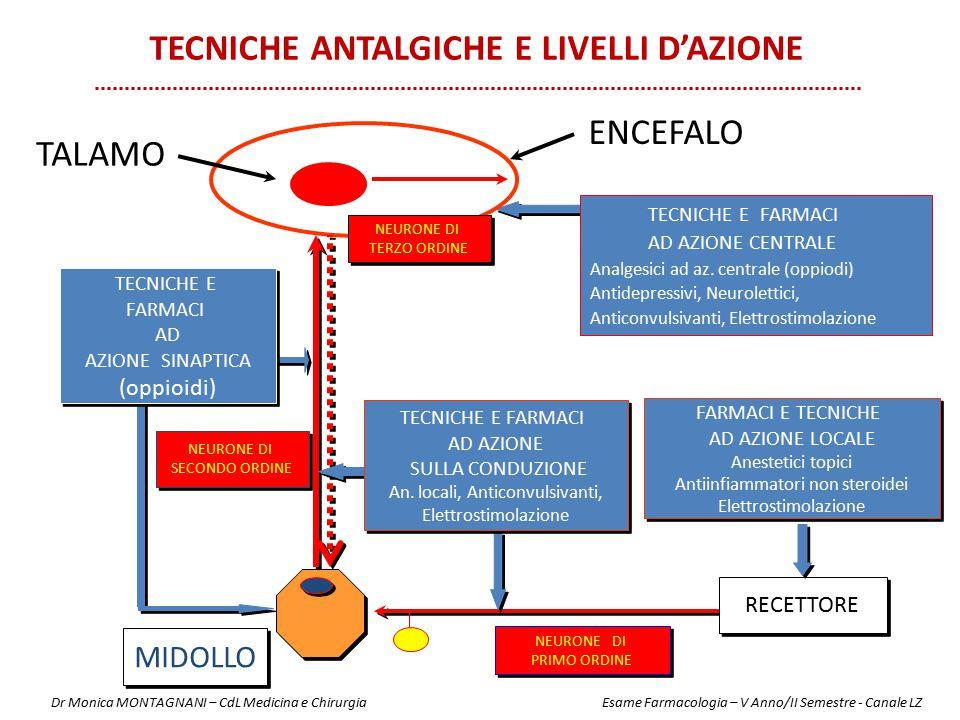 MIDOLLO RECETTORE FARMACI E TECNICHE AD AZIONE LOCALE Anestetici topici Antiinfiammatori non steroidei Elettrostimolazione FARMACI E TECNICHE AD AZION