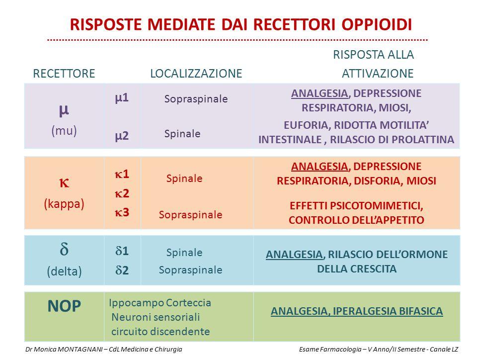 µ (mu) µ1 µ2 Sopraspinale Spinale ANALGESIA, DEPRESSIONE RESPIRATORIA, MIOSI, EUFORIA, RIDOTTA MOTILITA' INTESTINALE, RILASCIO DI PROLATTINA  (kappa)