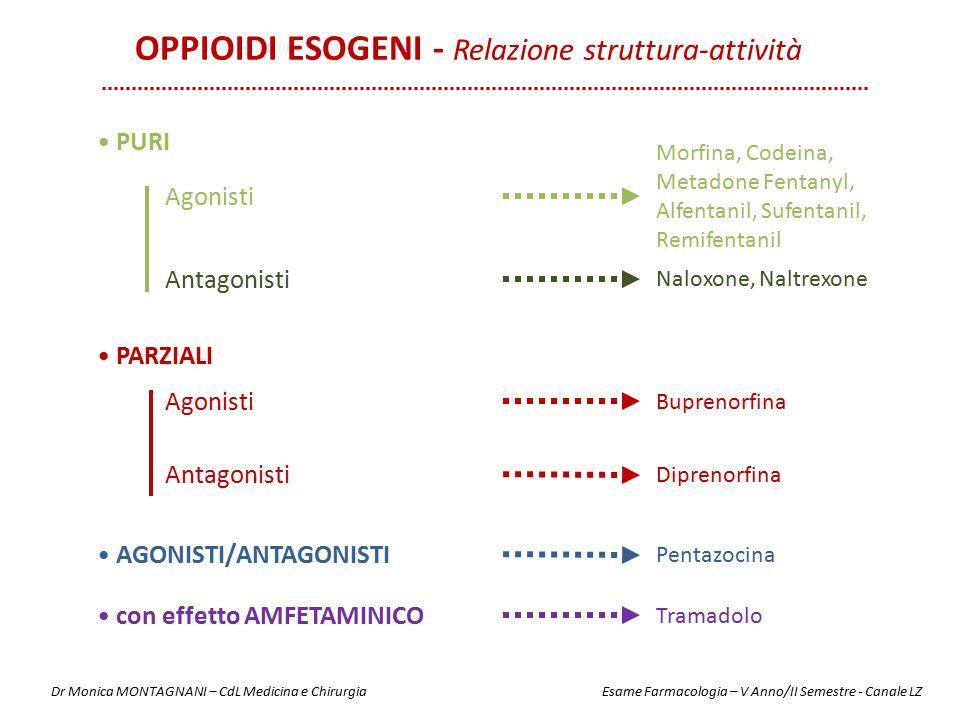 PURI Morfina, Codeina, Metadone Fentanyl, Alfentanil, Sufentanil, Remifentanil PARZIALI AGONISTI/ANTAGONISTI Agonisti Antagonisti Naloxone, Naltrexone
