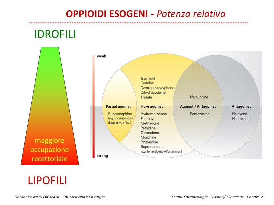 IDROFILI LIPOFILI maggiore occupazione recettoriale OPPIOIDI ESOGENI - Potenza relativa Dr Monica MONTAGNANI – CdL Medicina e Chirurgia Esame Farmacol