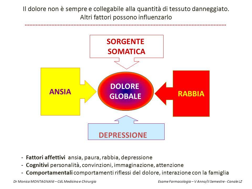 DOLORE GLOBALE ANSIA SORGENTE SOMATICA RABBIA DEPRESSIONE Il dolore non è sempre e collegabile alla quantità di tessuto danneggiato. Altri fattori pos