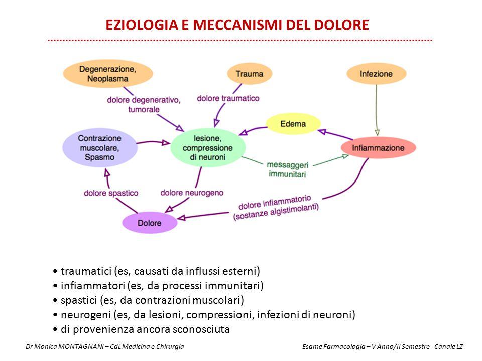 traumatici (es, causati da influssi esterni) infiammatori (es, da processi immunitari) spastici (es, da contrazioni muscolari) neurogeni (es, da lesio