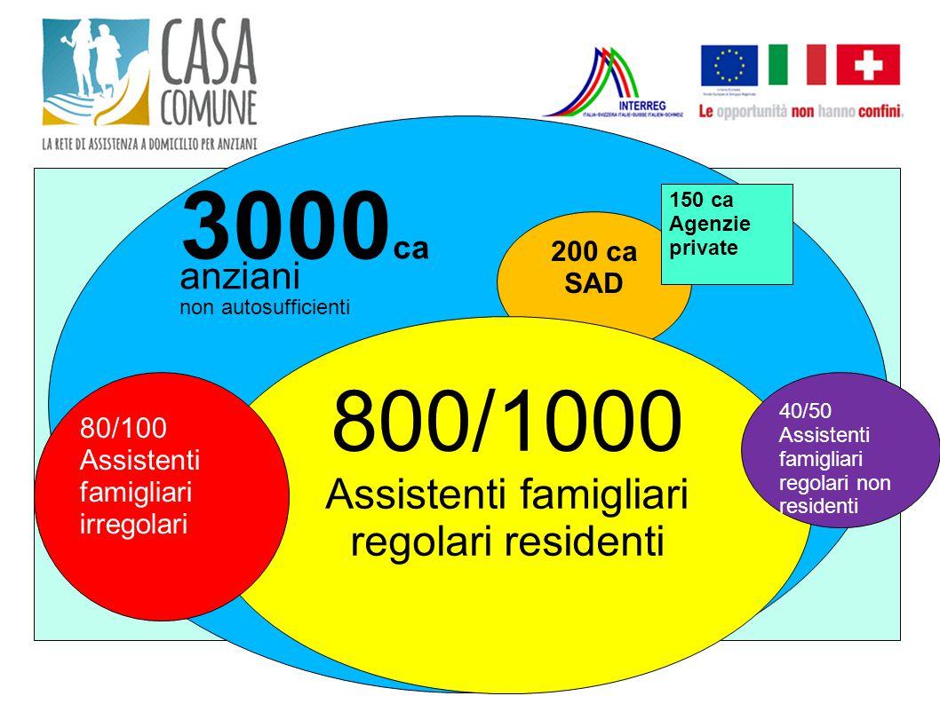 N 3000 ca anziani non autosufficienti 200 ca SAD 800/1000 Assistenti famigliari regolari residenti 150 ca Agenzie private 80/100 Assistenti famigliari
