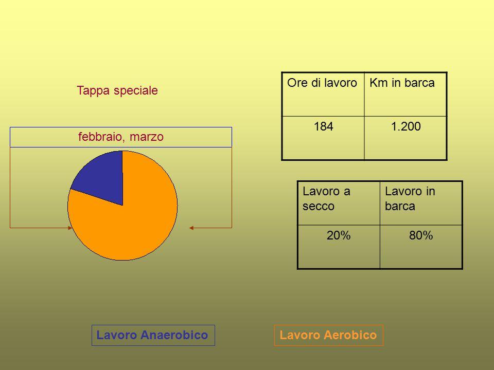 Lavoro AerobicoLavoro Anaerobico Tappa speciale Ore di lavoroKm in barca 1841.200 Lavoro a secco Lavoro in barca 20%80% febbraio, marzo