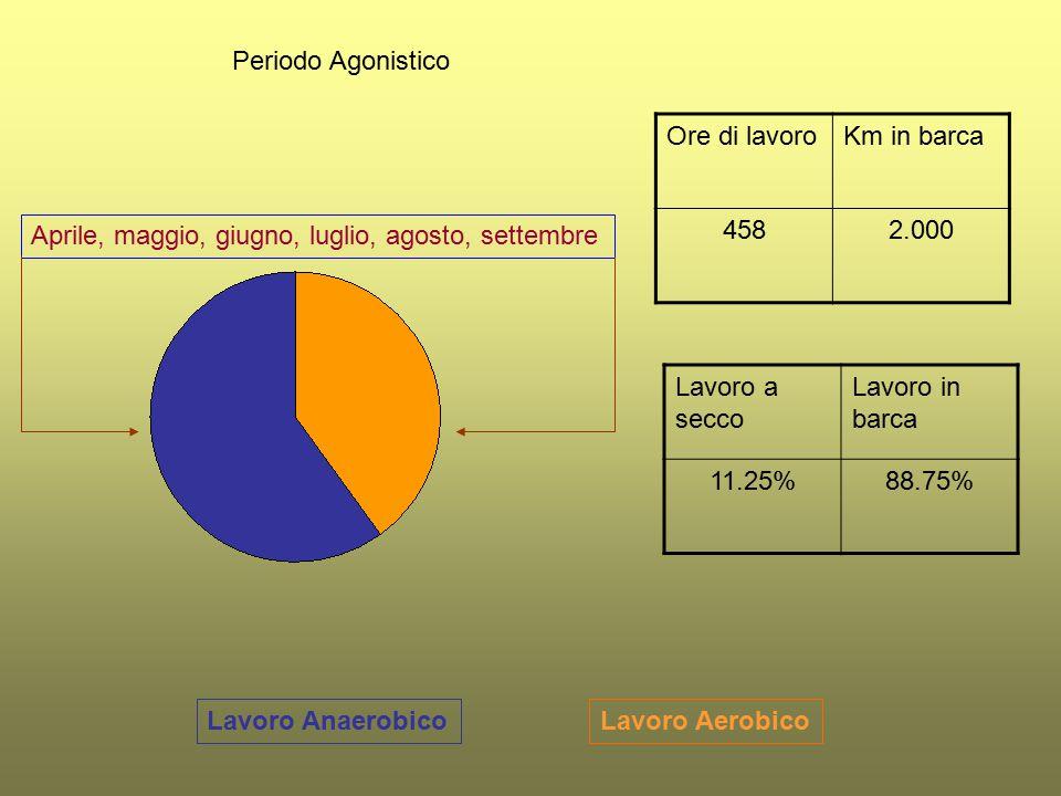 Lavoro AerobicoLavoro Anaerobico Periodo Agonistico Ore di lavoroKm in barca 4582.000 Lavoro a secco Lavoro in barca 11.25%88.75% Aprile, maggio, giug