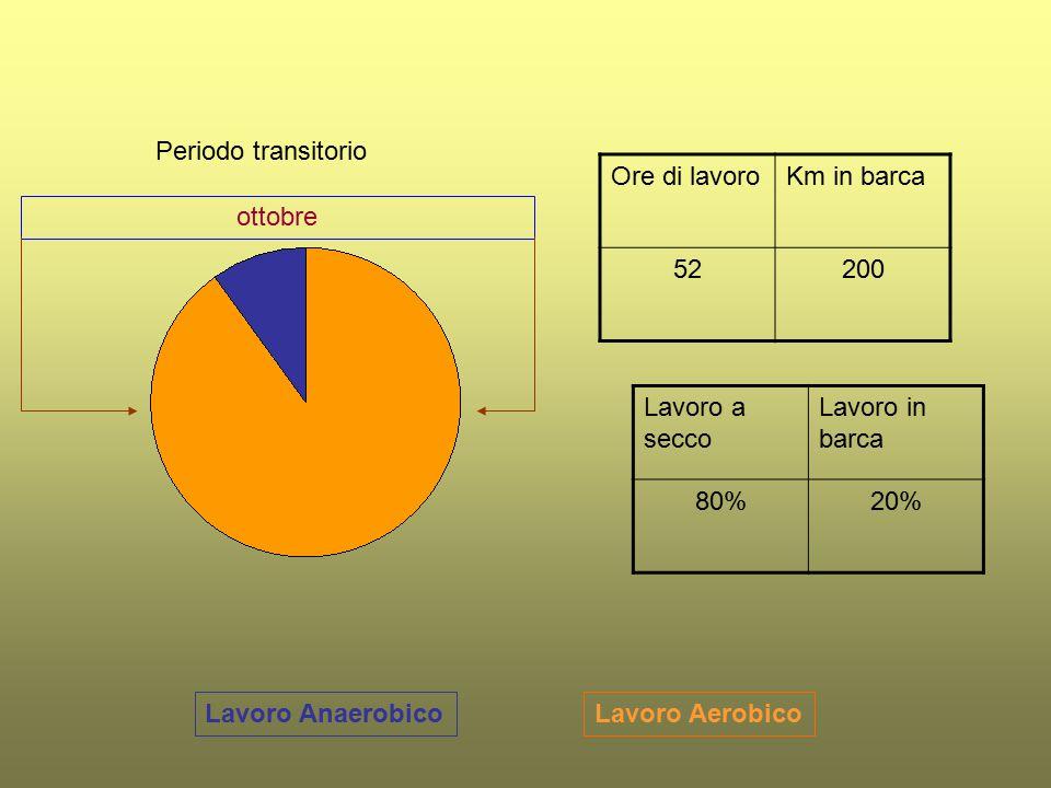 Lavoro AerobicoLavoro Anaerobico Periodo transitorio Ore di lavoroKm in barca 52200 Lavoro a secco Lavoro in barca 80%20% ottobre