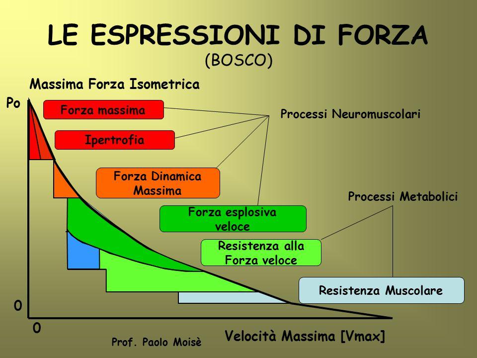 LE ESPRESSIONI DI FORZA (BOSCO) Po Massima Forza Isometrica Velocità Massima [Vmax] 0 0 Prof. Paolo Moisè Forza massima Ipertrofia Forza Dinamica Mass