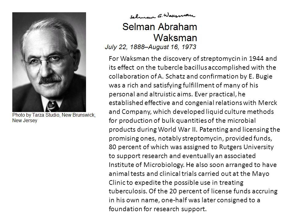 For Waksman the discovery of streptomycin in 1944 and its effect on the tubercle bacillus accomplished with the collaboration of A. Schatz and confirm