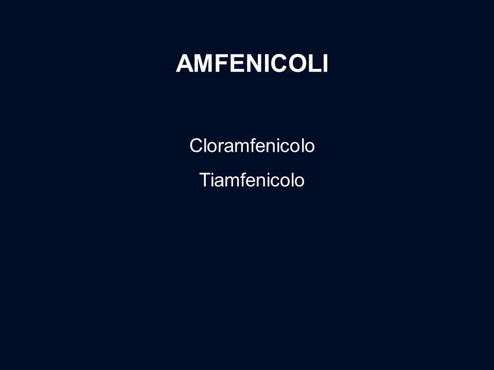 AMFENICOLI Cloramfenicolo Tiamfenicolo