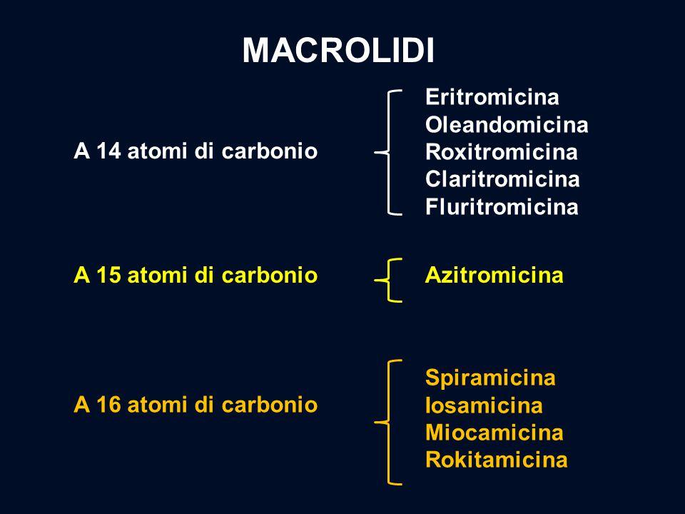 A 14 atomi di carbonio A 15 atomi di carbonio A 16 atomi di carbonio Eritromicina Oleandomicina Roxitromicina Claritromicina Fluritromicina Azitromici