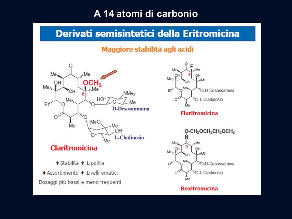 A 14 atomi di carbonio