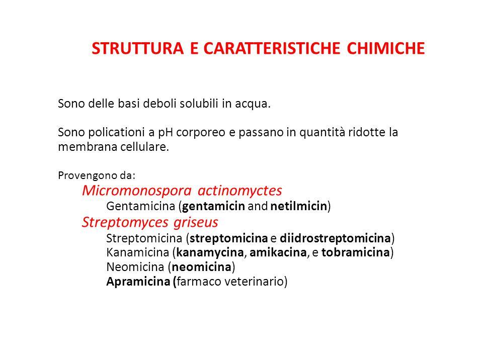 STRUTTURA E CARATTERISTICHE CHIMICHE Sono delle basi deboli solubili in acqua. Sono policationi a pH corporeo e passano in quantità ridotte la membran