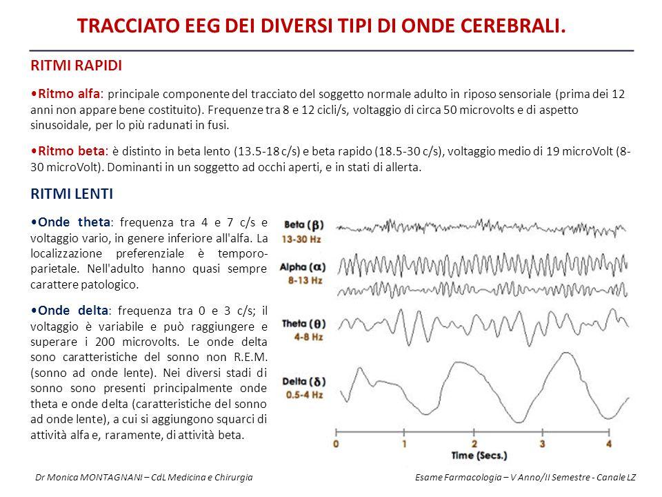 RITMI RAPIDI Ritmo alfa: principale componente del tracciato del soggetto normale adulto in riposo sensoriale (prima dei 12 anni non appare bene costi
