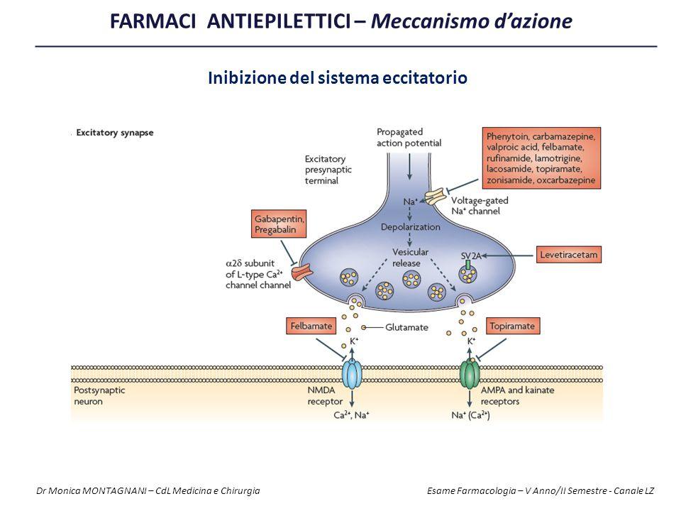 FARMACI ANTIEPILETTICI – Meccanismo d'azione Inibizione del sistema eccitatorio Dr Monica MONTAGNANI – CdL Medicina e Chirurgia Esame Farmacologia – V