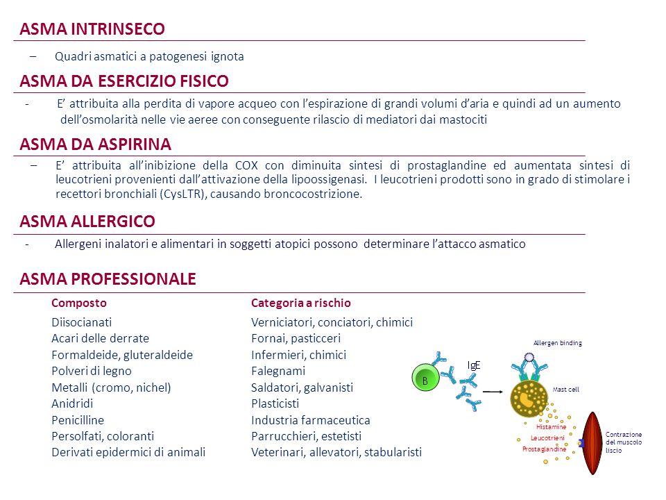 ASMA DA ESERCIZIO FISICO - E' attribuita alla perdita di vapore acqueo con l'espirazione di grandi volumi d'aria e quindi ad un aumento dell'osmolarit