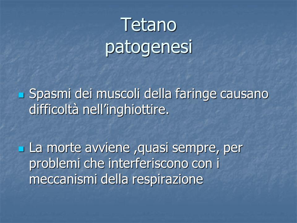Tetano patogenesi Spasmi dei muscoli della faringe causano difficoltà nell'inghiottire. Spasmi dei muscoli della faringe causano difficoltà nell'inghi