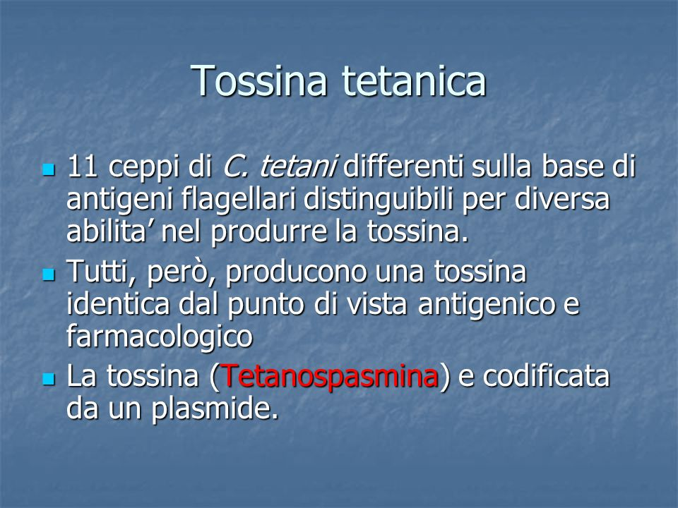 Tossina tetanica 11 ceppi di C. tetani differenti sulla base di antigeni flagellari distinguibili per diversa abilita' nel produrre la tossina. 11 cep