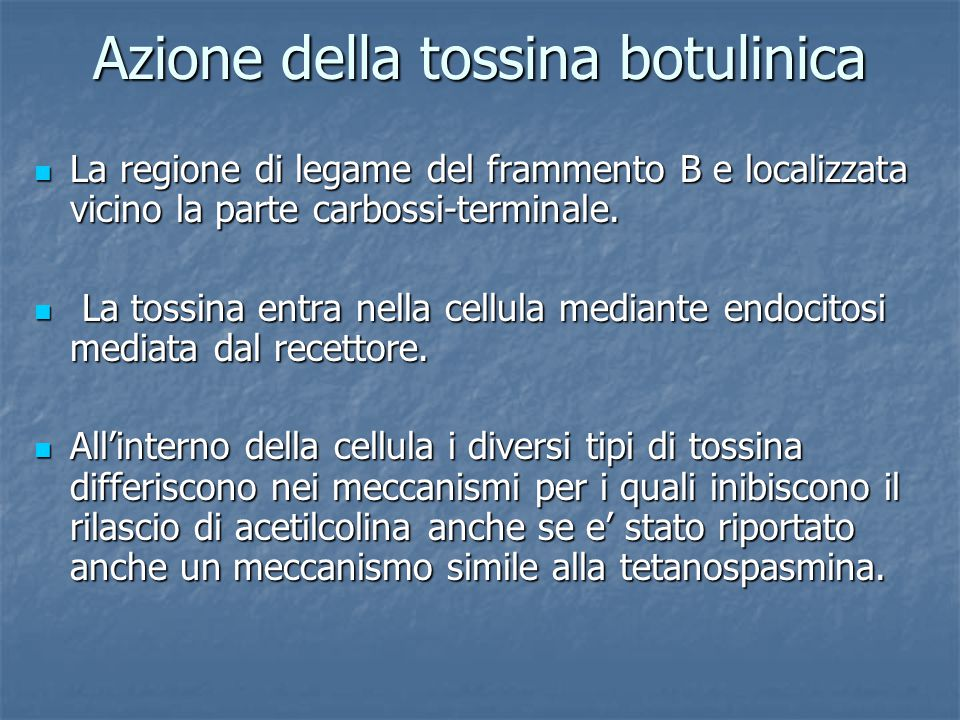 Azione della tossina botulinica La regione di legame del frammento B e localizzata vicino la parte carbossi-terminale. La regione di legame del framme
