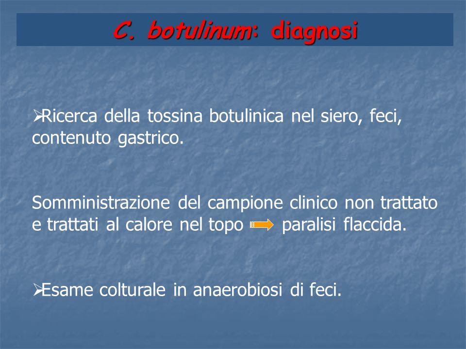 C. botulinum: diagnosi  Ricerca della tossina botulinica nel siero, feci, contenuto gastrico. Somministrazione del campione clinico non trattato e tr