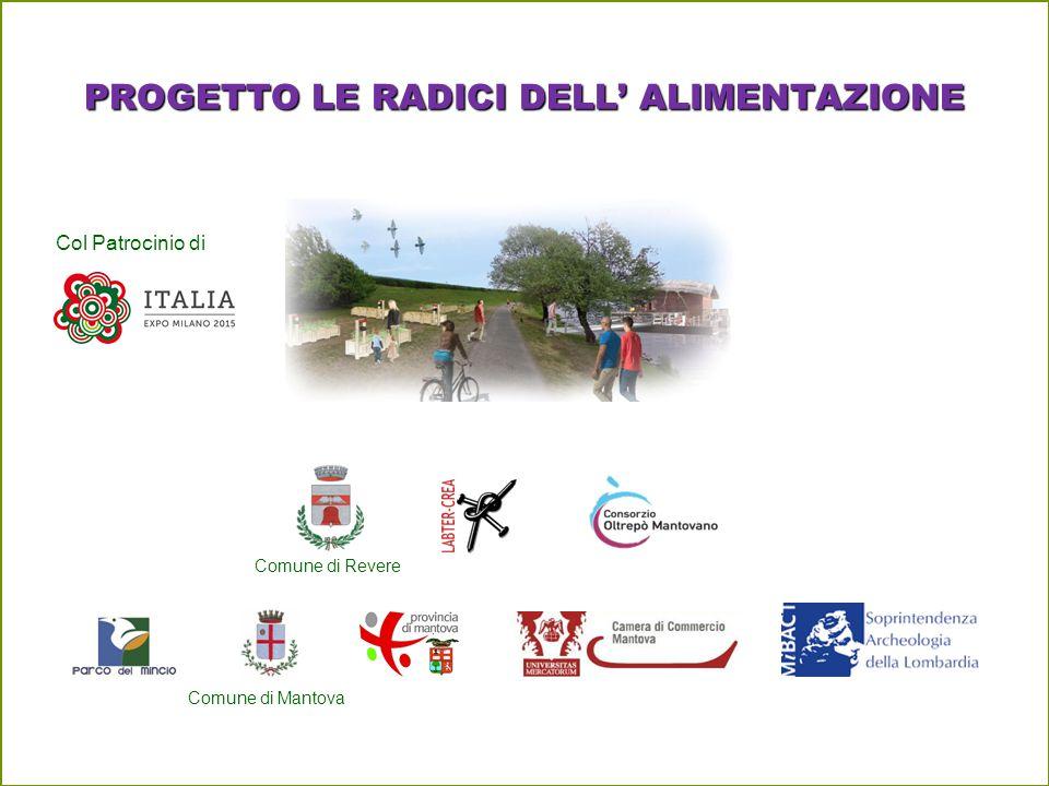 PROGETTO LE RADICI DELL' ALIMENTAZIONE Col Patrocinio di Comune di Revere Comune di Mantova