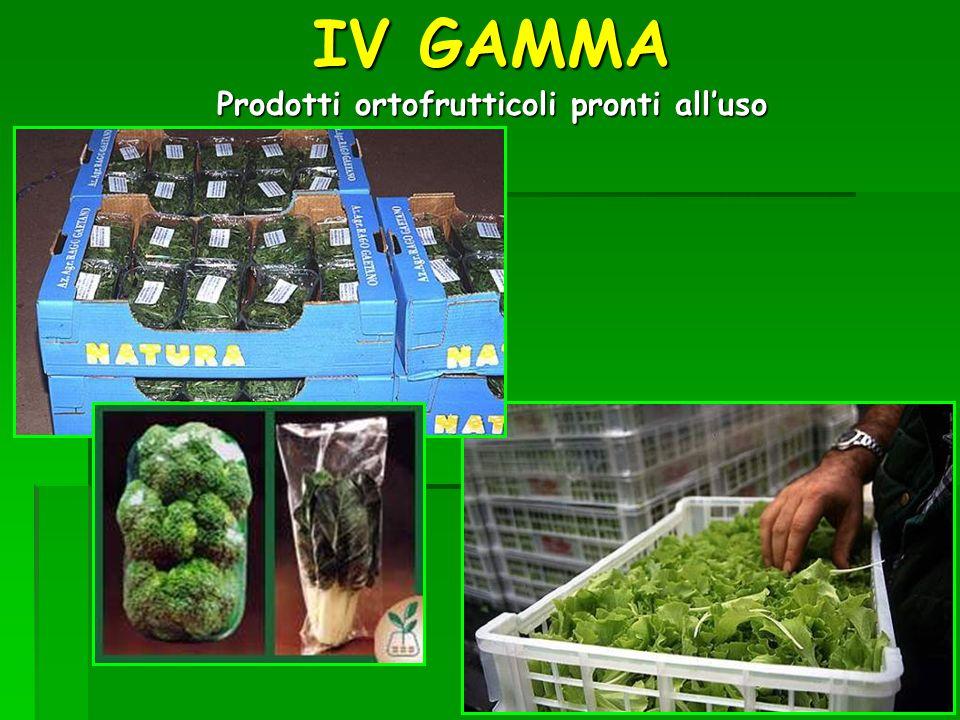 IV GAMMA Prodotti ortofrutticoli pronti all'uso