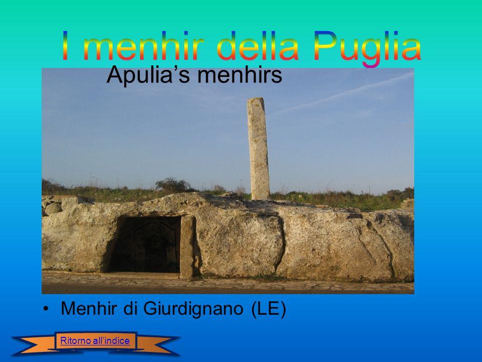Menhir di Giurdignano (LE) Apulia's menhirs Ritorno all'indice
