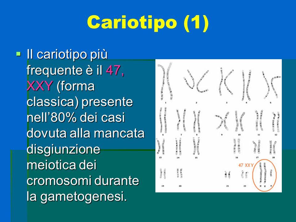 Cariotipo (2)  Nel rimanente 20 % si includono aneuploidie più alte, mosaici 47, XXY / 46 XY e anomalie strutturali del cromosoma X.